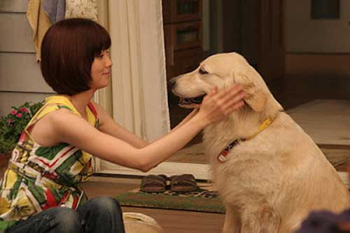 10 Promises to My Dog (2008)