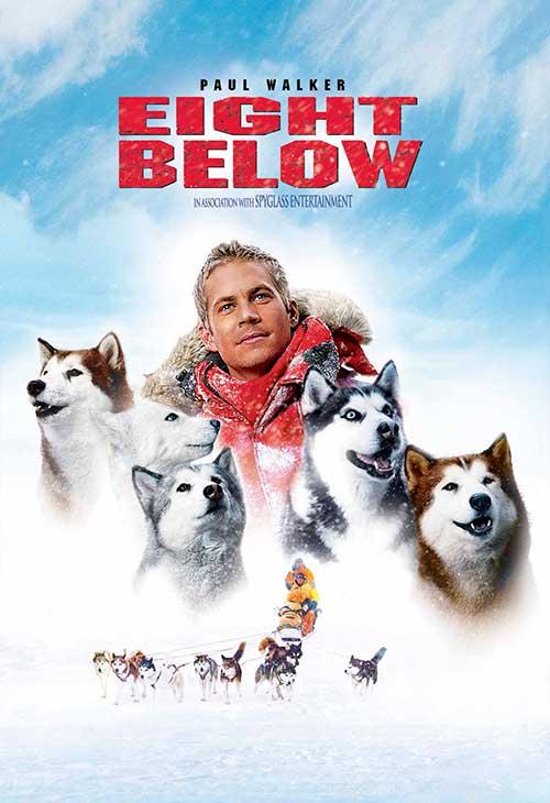 Eight Below - phim về loài chó cảm động