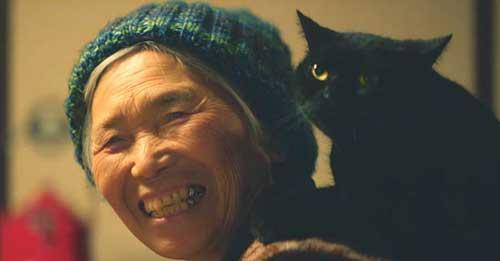 Bộ phim Cats learming cảm động