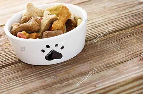 Ưu nhược điểm của thức ăn cho chó dạng hạt