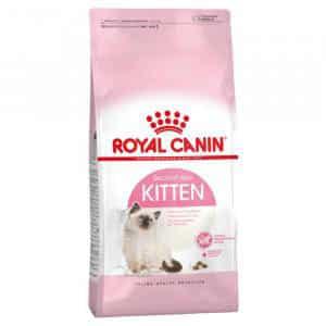 Royal Canin Kitten cho mèo